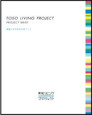 TOSO PROJECT BRIEF